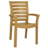 Marina Resin Dining Arm Chair Brown