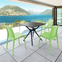 Maya Dining Chair Tropical Green ISP025-TRG - 23