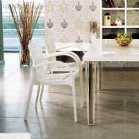 Dejavu Polycarbonate Arm Chair White ISP032-GWHI - 1