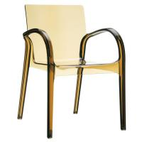 Dejavu Clear Plastic Outdoor Arm Chair Amber