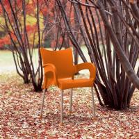 Romeo Resin Dining Arm Chair Orange ISP043-ORA - 3