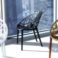 Crystal Polycarbonate Modern Dining Chair Transparent Black ISP052-TBLA - 2