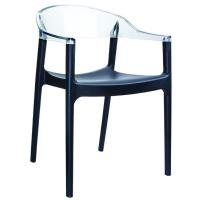 Carmen Dining Armchair Black with Transparent Back