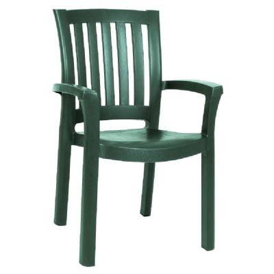 Sunshine Resin Dining Arm Chair Green ISP015-GRE