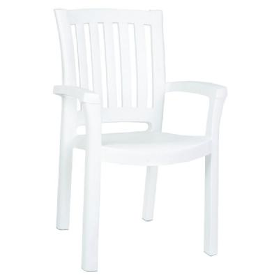 Sunshine Resin Dining Arm Chair ISP015-WHI