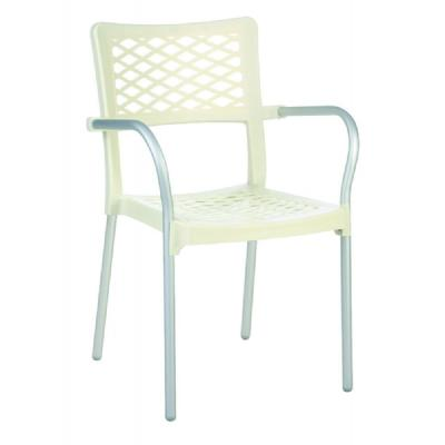 Bella Dining Arm Chair Beige ISP040-BEI