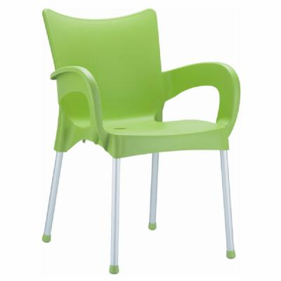 Romeo Resin Dining Arm Chair Apple Green ISP043-APP