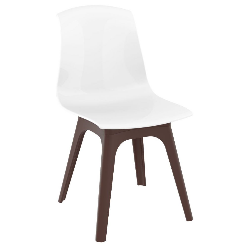 Allegra PP Dining Chair Brown with Glossy White Seat ISP096-BRW-GWHI